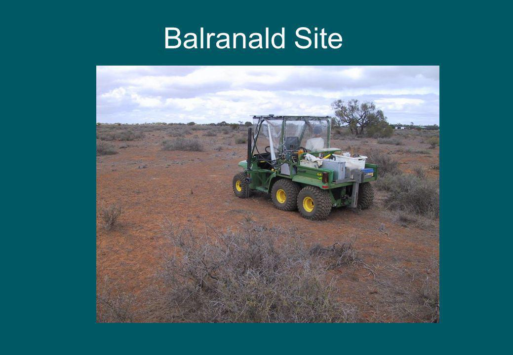 Balranald Site