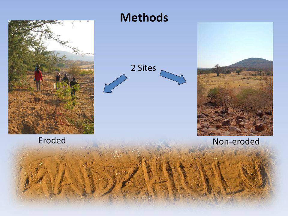 Methods 2 Sites Eroded Non-eroded