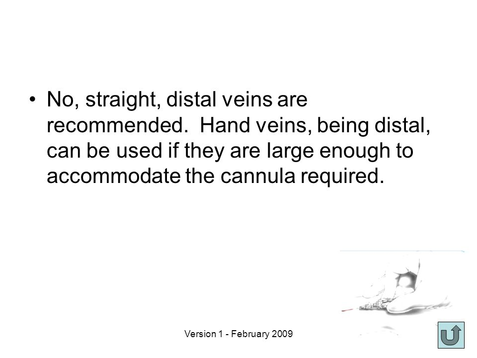 Version 1 - February 2009 No, straight, distal veins are recommended.