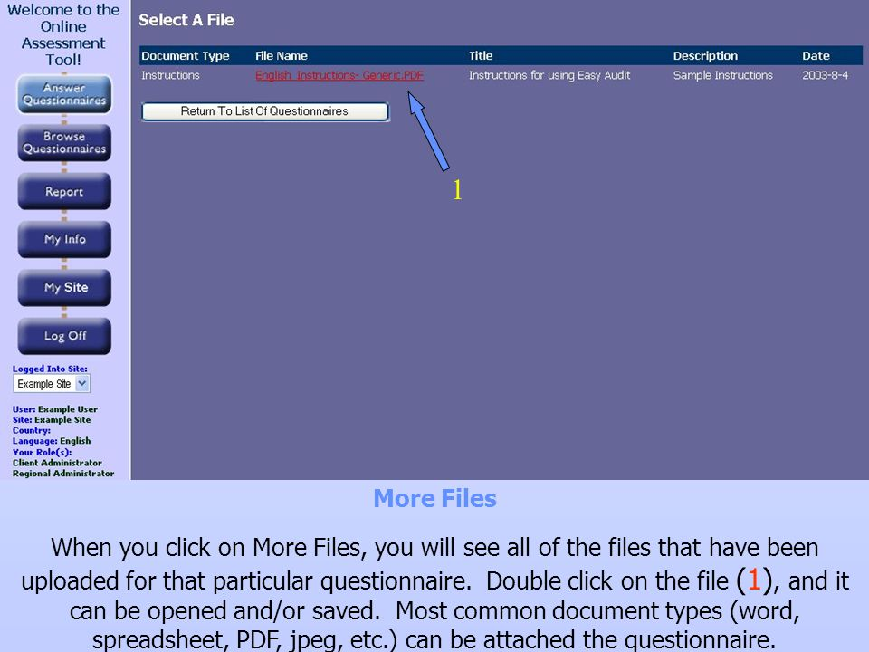 More Files When you click on More Files, you will see all of the files that have been uploaded for that particular questionnaire. Double click on the