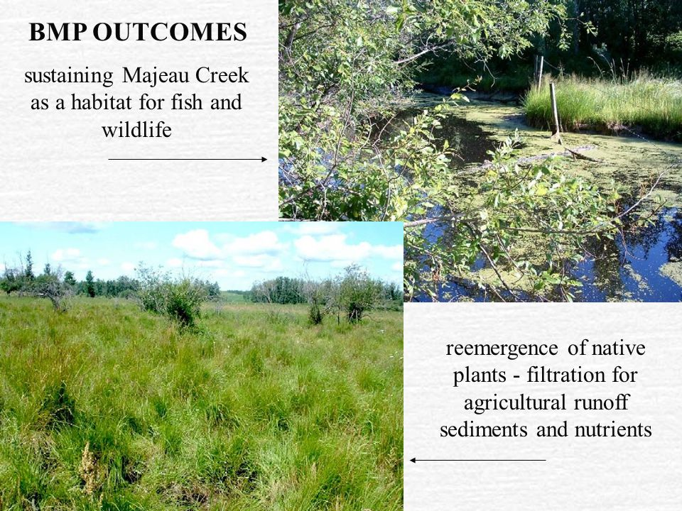 providing a better alternate to seasonal use of stream course and drainage ponds GRAZING STRATEGY With a good, safe year-round water source, the plan