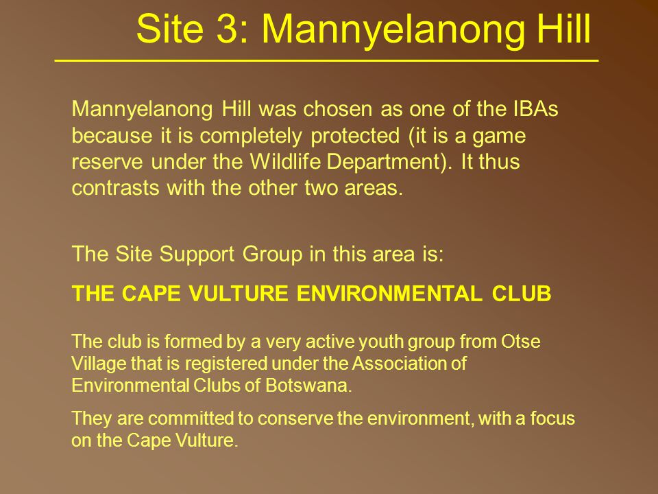 Site 3: Mannyelanong Hill Mannyelanong Hill was chosen as one of the IBAs because it is completely protected (it is a game reserve under the Wildlife Department).