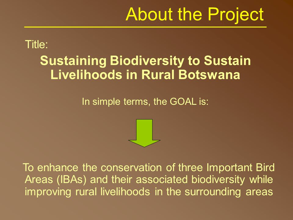 Overall Objective To assist three Site Support Groups (SSGs) to develop replicable pilot projects that will motivate and empower their communities to take action for conserving biodiversity through the protection of their Important Bird Areas (IBAs) pilot projects motivation empowerment livelihood and biodiversity improvement