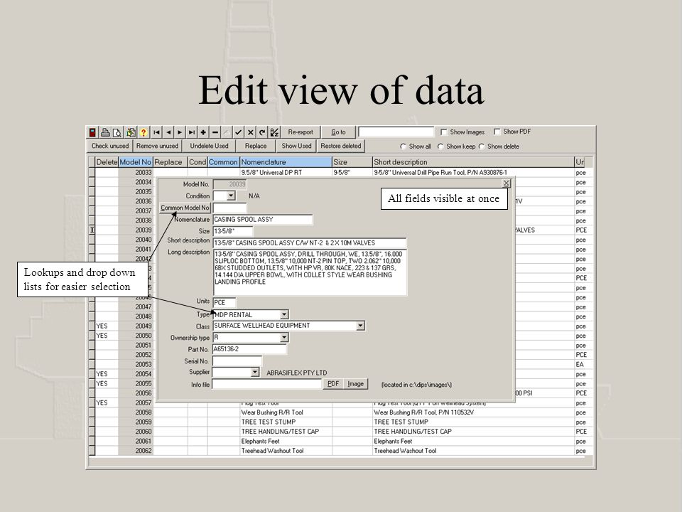 Edit view of data Lookups and drop down lists for easier selection All fields visible at once