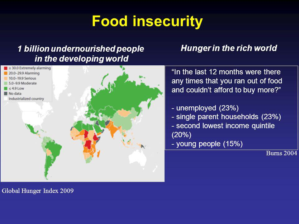 Global Hunger Index 2009 1 billion undernourished people in the developing world Hunger in the rich world In the last 12 months were there any times that you ran out of food and couldnt afford to buy more.