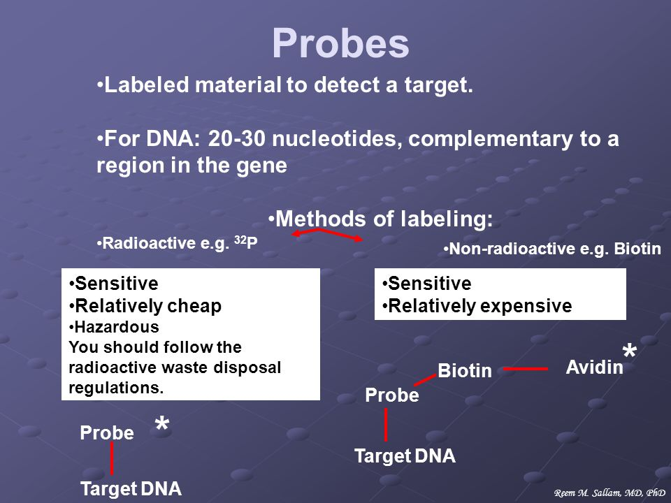 Labeled material to detect a target. For DNA: 20-30 nucleotides, complementary to a region in the gene Methods of labeling: Non-radioactive e.g. Bioti