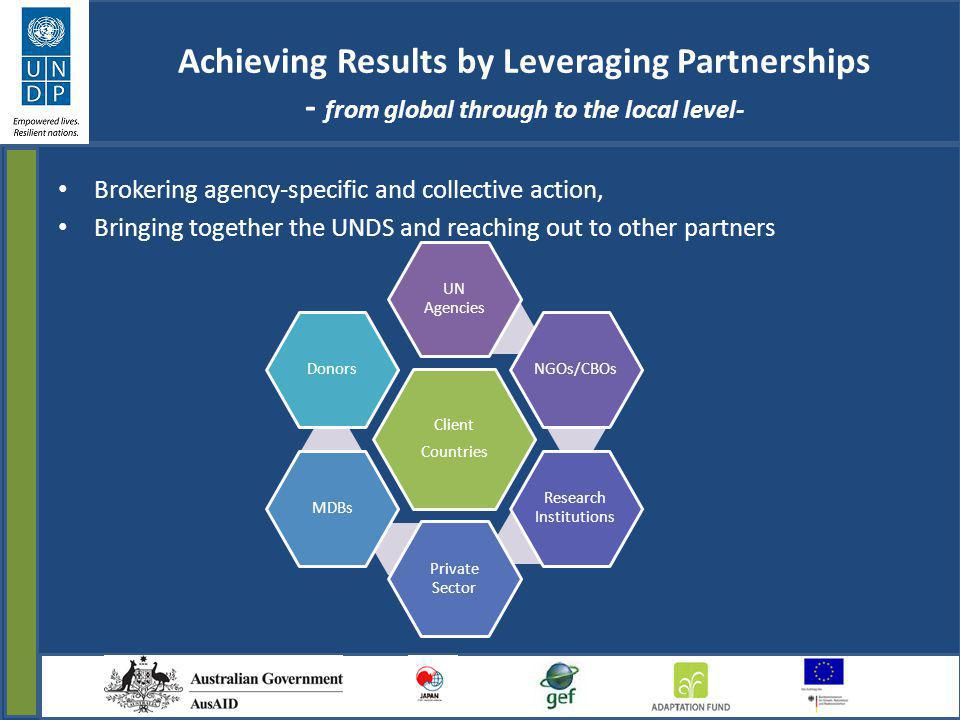 Achieving Results by Leveraging Partnerships - from global through to the local level- Brokering agency-specific and collective action, Bringing toget