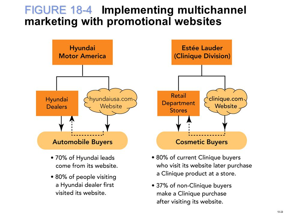 FIGURE 18-4 FIGURE 18-4 Implementing multichannel marketing with promotional websites 18-29