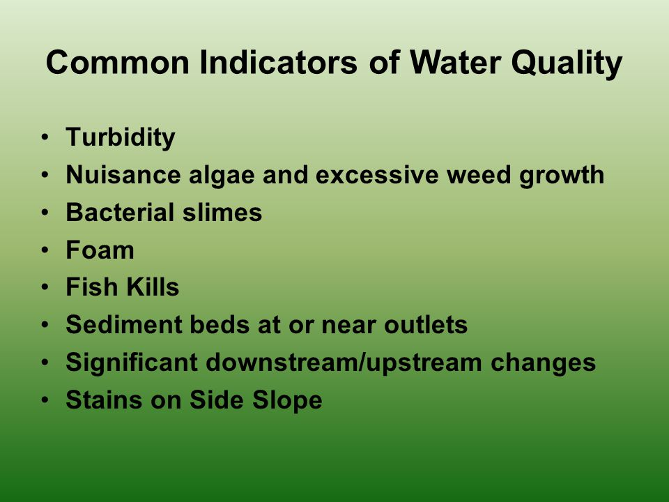 Turbidity Nuisance algae and excessive weed growth Bacterial slimes Foam Fish Kills Sediment beds at or near outlets Significant downstream/upstream changes Stains on Side Slope Common Indicators of Water Quality