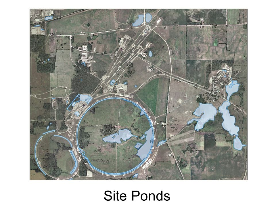 Site Ponds
