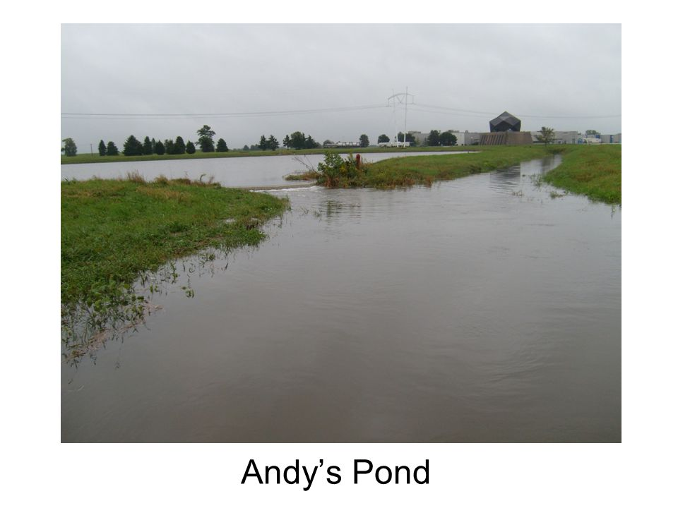 Andys Pond