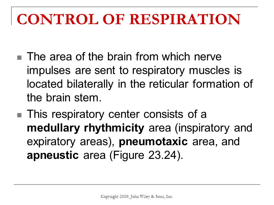 CONTROL OF RESPIRATION The area of the brain from which nerve impulses are sent to respiratory muscles is located bilaterally in the reticular formati