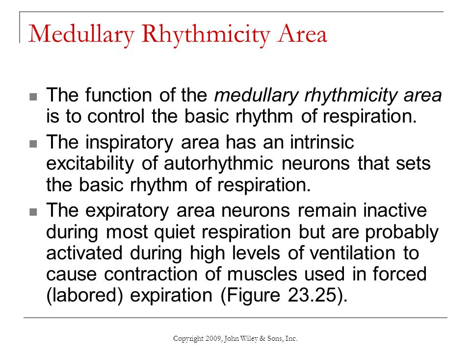 Medullary Rhythmicity Area The function of the medullary rhythmicity area is to control the basic rhythm of respiration. The inspiratory area has an i