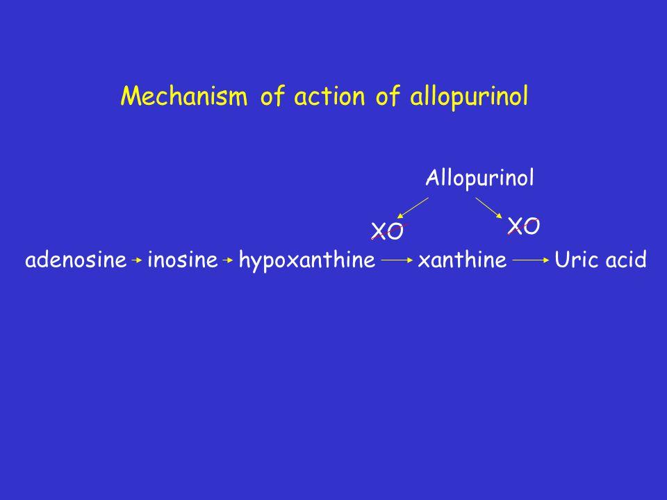 Mechanism of action of allopurinol adenosineinosine hypoxanthinexanthineUric acid Allopurinol XO