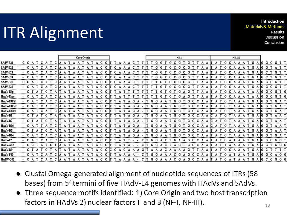 Results: Inverted Terminal Repeats Method Clustal Omega-generated alignment of nucleotide sequences of ITRs (58 bases) from 5 termini of five HAdV-E4 genomes with HAdVs and SAdVs.