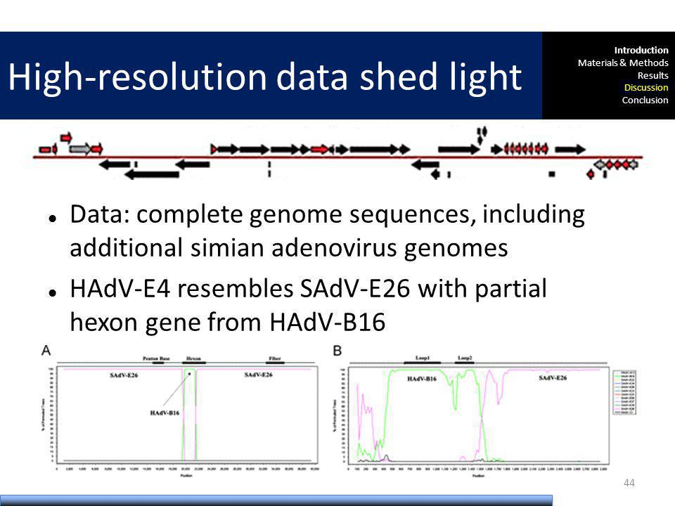 Data: complete genome sequences, including additional simian adenovirus genomes HAdV-E4 resembles SAdV-E26 with partial hexon gene from HAdV-B16 High-