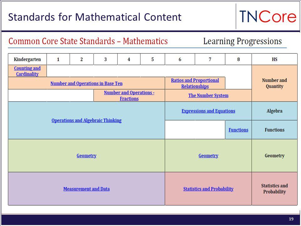 19 Math Standards for Mathematical Content