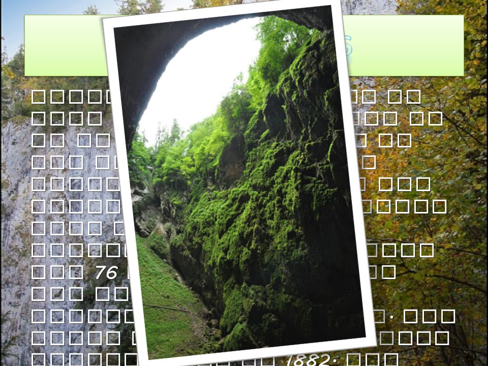 Famous Macocha Abyss is more than 138 m deep and it is the biggest gorge of its kind in the Czech Republic and even in the Central Europe. The upper p