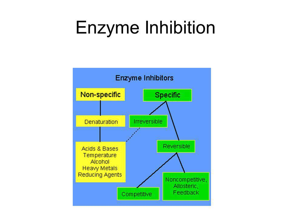 Enzymes Induced fit: The substrate is distorted (atoms are shifted, bonds are stretched, and reactive groups are brought close together).