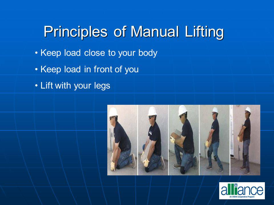 Principles of Manual Lifting Principles of Manual Lifting Keep load close to your body Keep load in front of you Lift with your legs