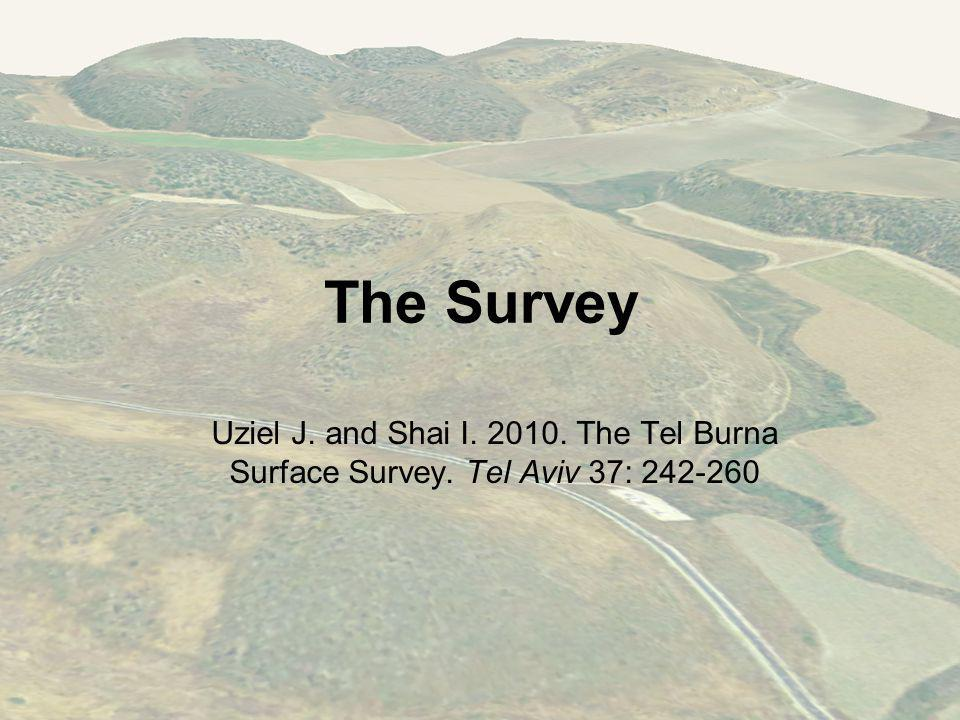 The Survey Uziel J. and Shai I. 2010. The Tel Burna Surface Survey. Tel Aviv 37: 242-260