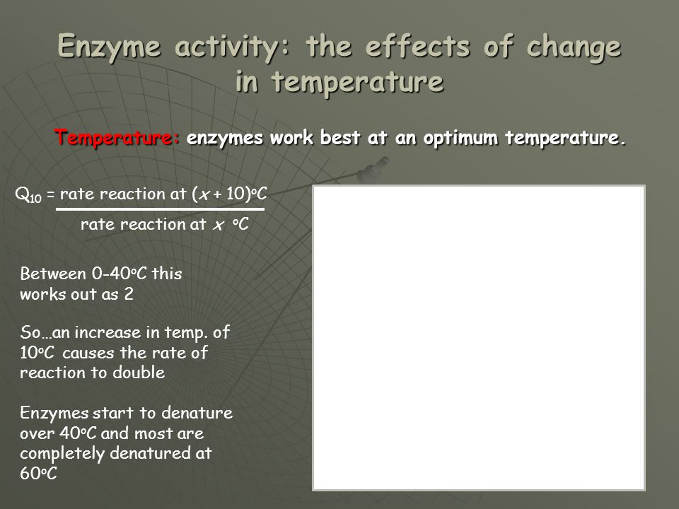 Enzyme activity: the effects of change in temperature Temperature: enzymes work best at an optimum temperature. Temperature: enzymes work best at an o