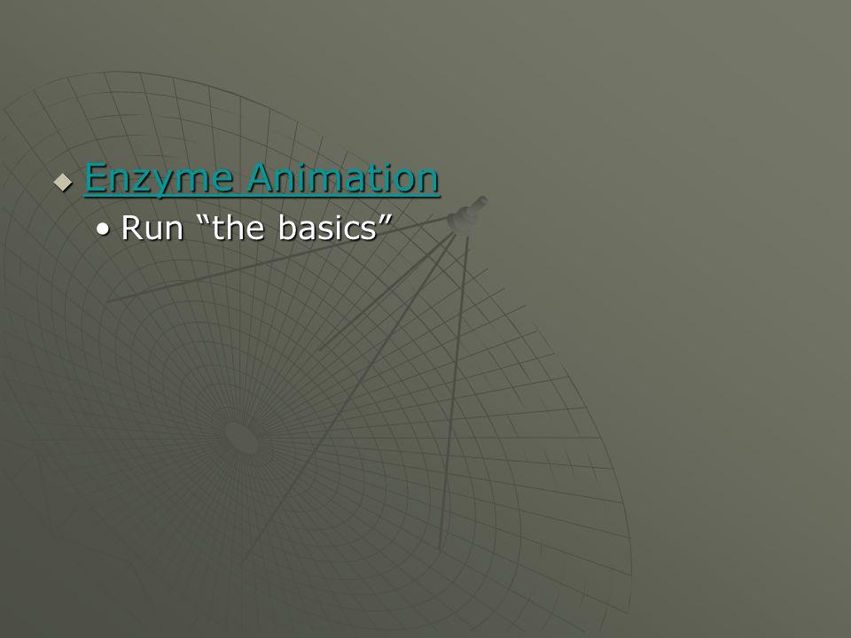Enzyme Animation Enzyme Animation Enzyme Animation Enzyme Animation Run the basicsRun the basics