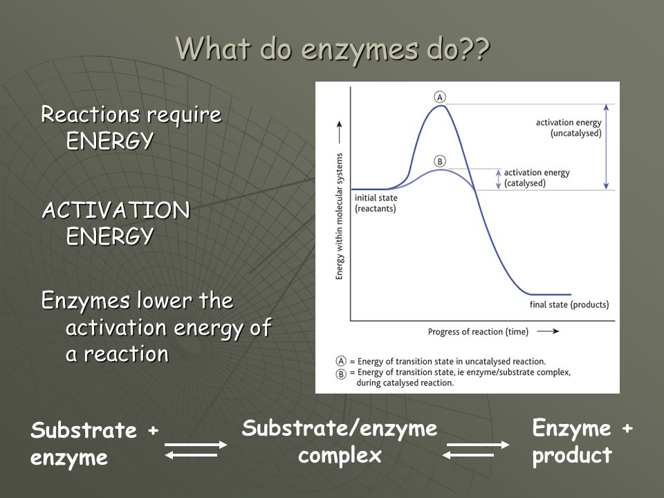 What do enzymes do?? Reactions require ENERGY ACTIVATION ENERGY Enzymes lower the activation energy of a reaction Substrate + enzyme Substrate/enzyme