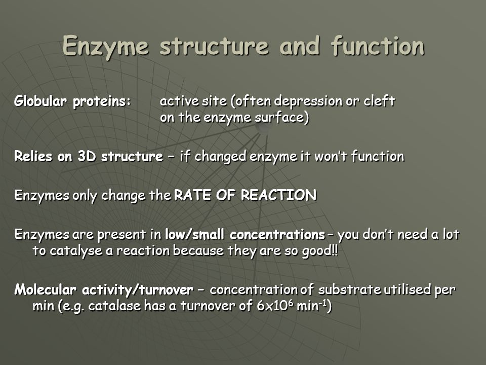 Enzyme structure and function Globular proteins:active site (often depression or cleft on the enzyme surface) Relies on 3D structure – if changed enzy