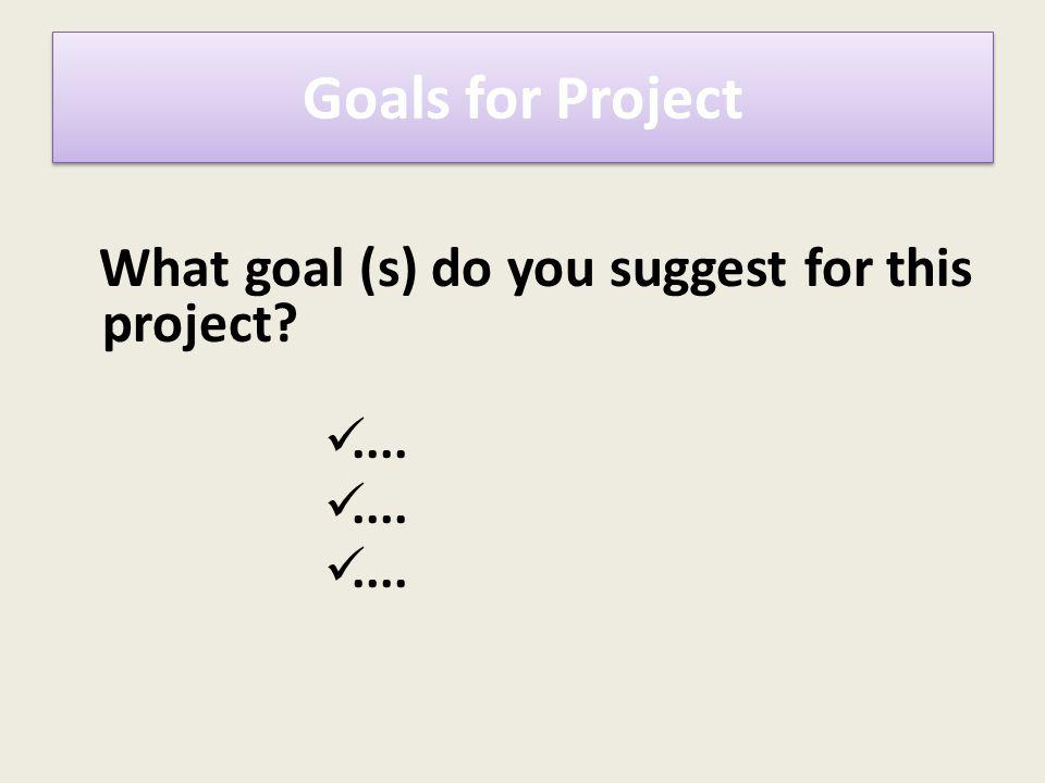 What goal (s) do you suggest for this project?.... Goals for Project