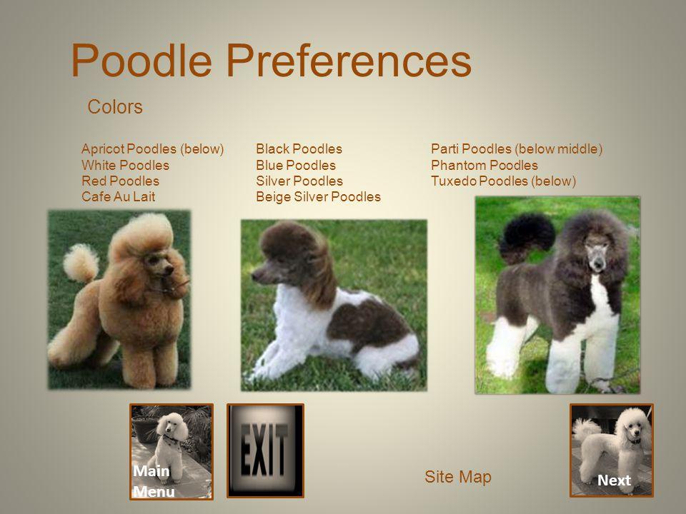 Next Main Menu Poodle Preferences Site Map Colors Apricot Poodles (below) White Poodles Red Poodles Cafe Au Lait Black Poodles Blue Poodles Silver Poodles Beige Silver Poodles Parti Poodles (below middle) Phantom Poodles Tuxedo Poodles (below)