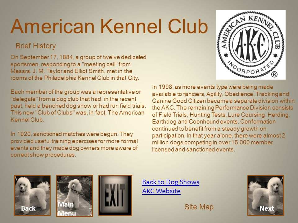 American Kennel Club Brief History Back Main Menu Back to Dog Shows AKC Website Site Map Next On September 17, 1884, a group of twelve dedicated sport