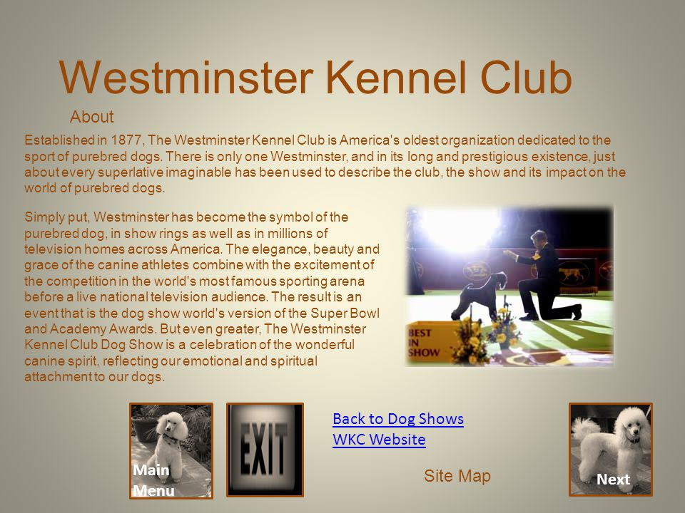 Main Menu Westminster Kennel Club Back to Dog Shows WKC Website Site Map Established in 1877, The Westminster Kennel Club is America's oldest organiza