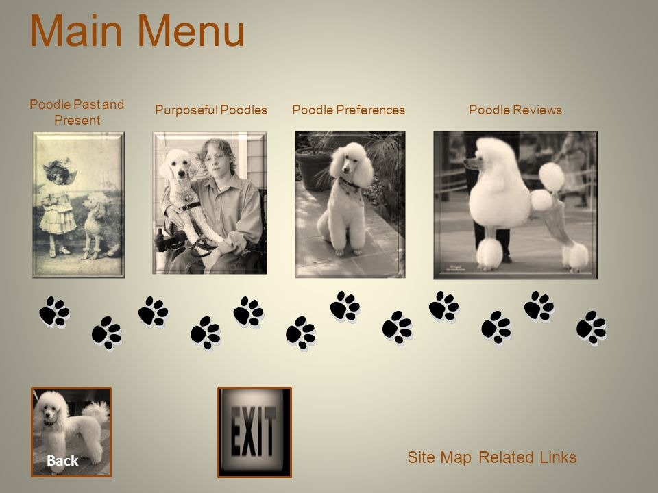 Main Menu Back Poodle Past and Present Purposeful PoodlesPoodle Preferences Site Map Poodle Reviews Related Links