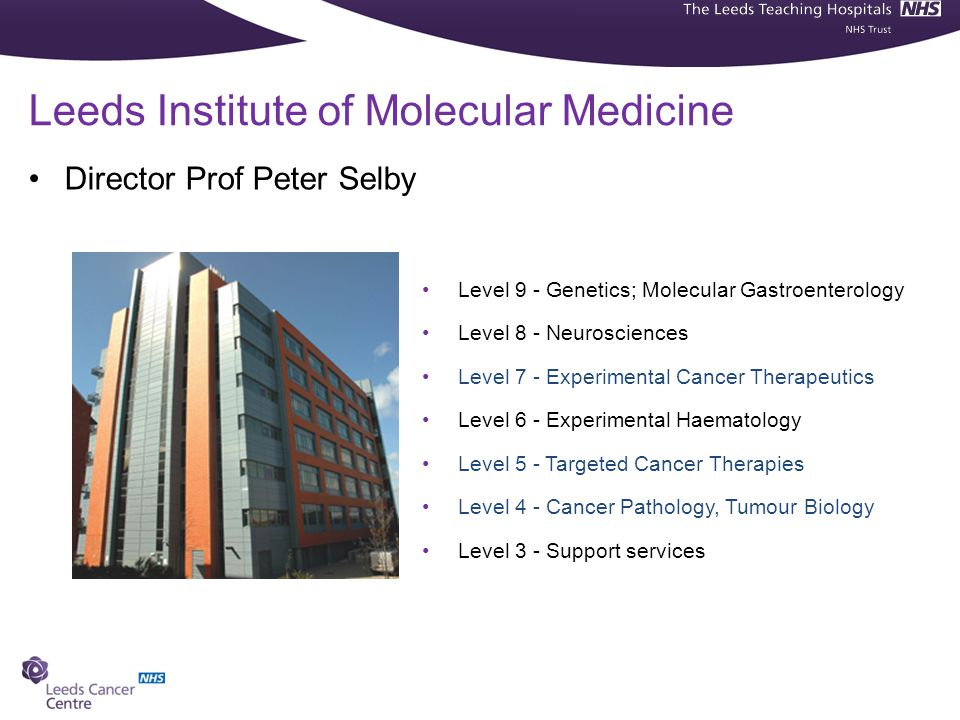 Director Prof Peter Selby Leeds Institute of Molecular Medicine Level 9 - Genetics; Molecular Gastroenterology Level 8 - Neurosciences Level 7 - Experimental Cancer Therapeutics Level 6 - Experimental Haematology Level 5 - Targeted Cancer Therapies Level 4 - Cancer Pathology, Tumour Biology Level 3 - Support services