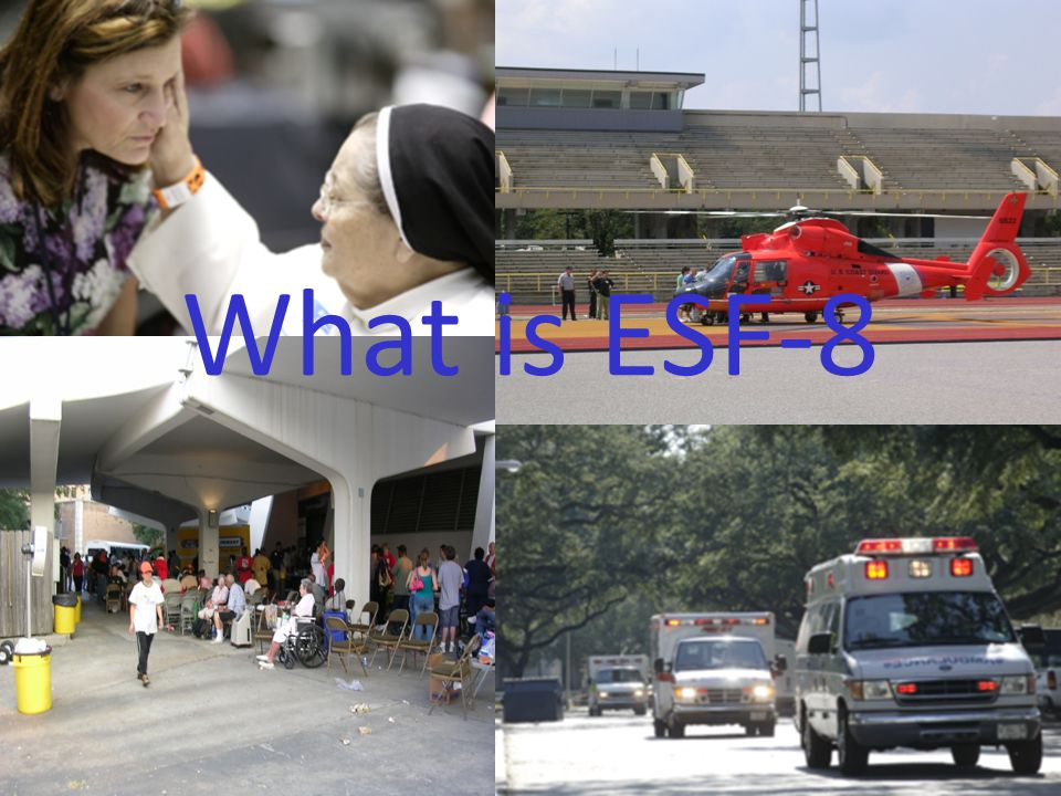 What is ESF-8