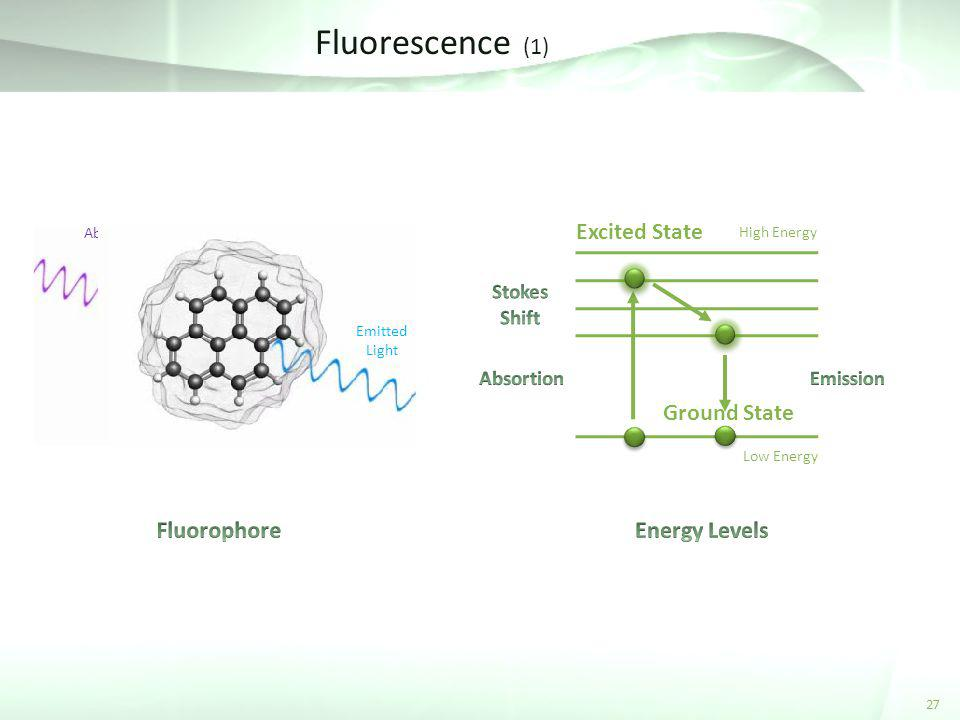 Fluorescence (1) 27 Low Energy High Energy Ground State Absorbed Light Excited State Emitted Light