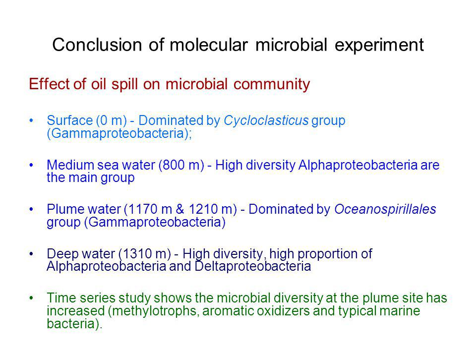 Conclusion of molecular microbial experiment Effect of oil spill on microbial community Surface (0 m) - Dominated by Cycloclasticus group (Gammaproteobacteria); Medium sea water (800 m) - High diversity Alphaproteobacteria are the main group Plume water (1170 m & 1210 m) - Dominated by Oceanospirillales group (Gammaproteobacteria) Deep water (1310 m) - High diversity, high proportion of Alphaproteobacteria and Deltaproteobacteria Time series study shows the microbial diversity at the plume site has increased (methylotrophs, aromatic oxidizers and typical marine bacteria).