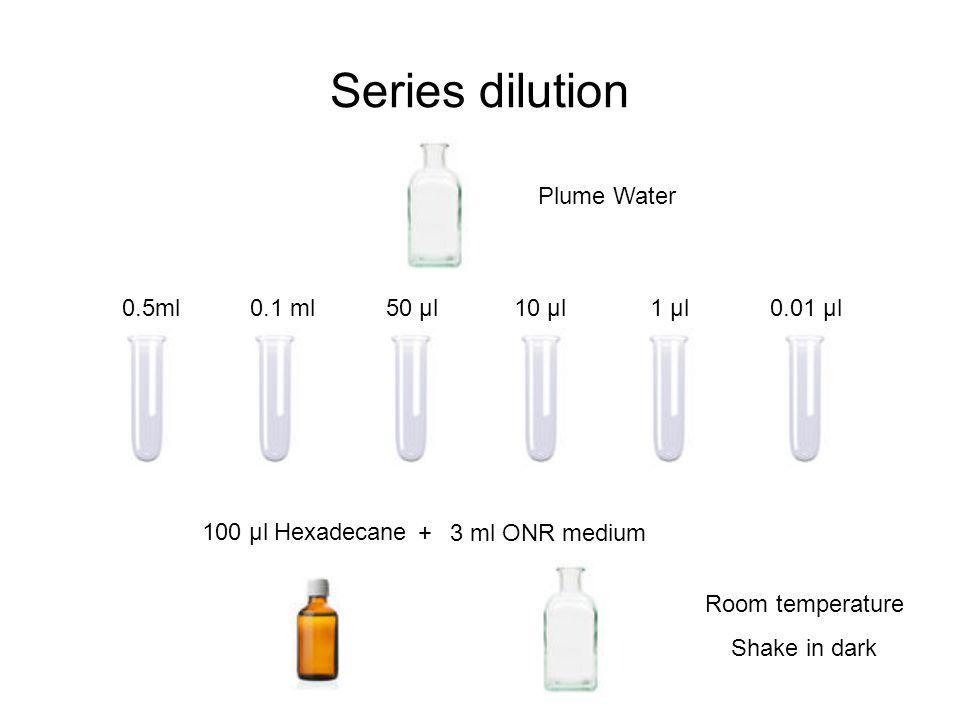 Series dilution Plume Water 0.5ml 0.1 ml50 µl10 µl1 µl0.01 µl 100 µl Hexadecane 3 ml ONR medium+ Room temperature Shake in dark