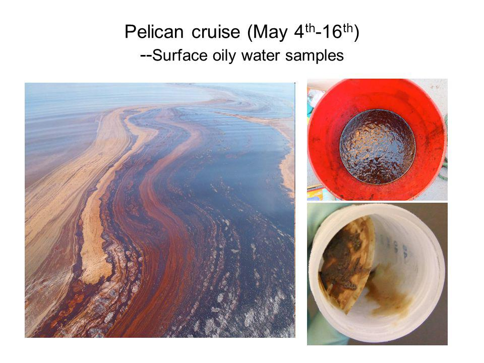Pelican cruise (May 4 th -16 th ) -- Surface oily water samples