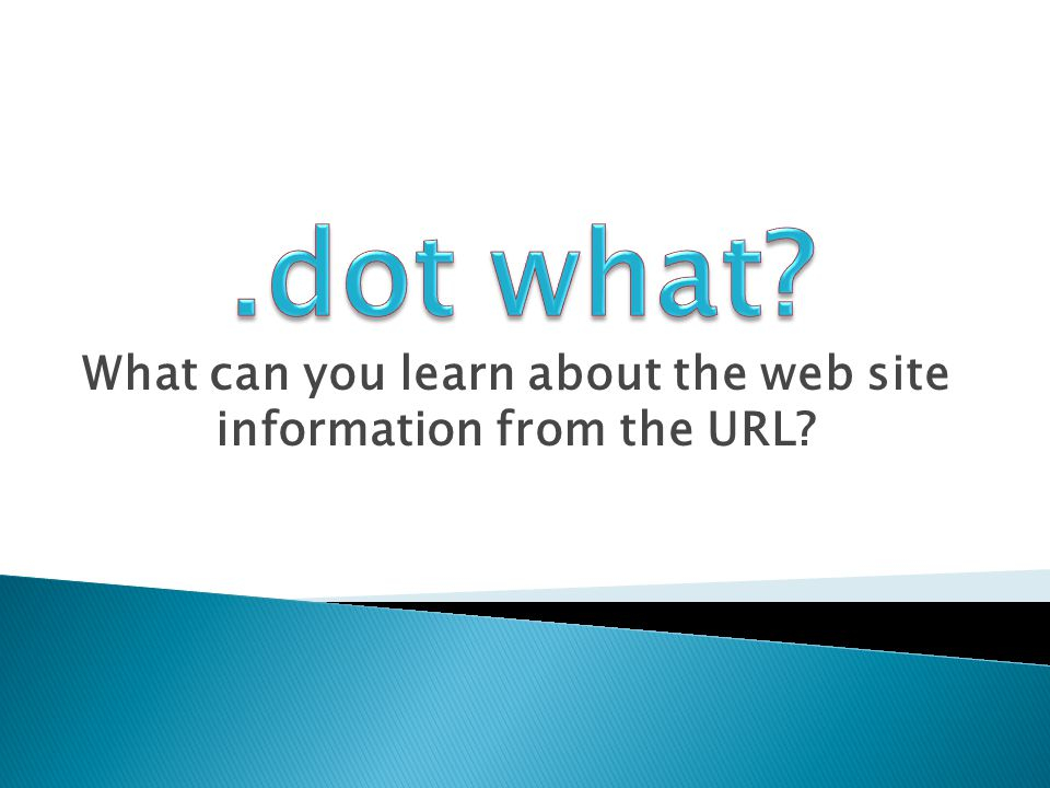 What can you learn about the web site information from the URL