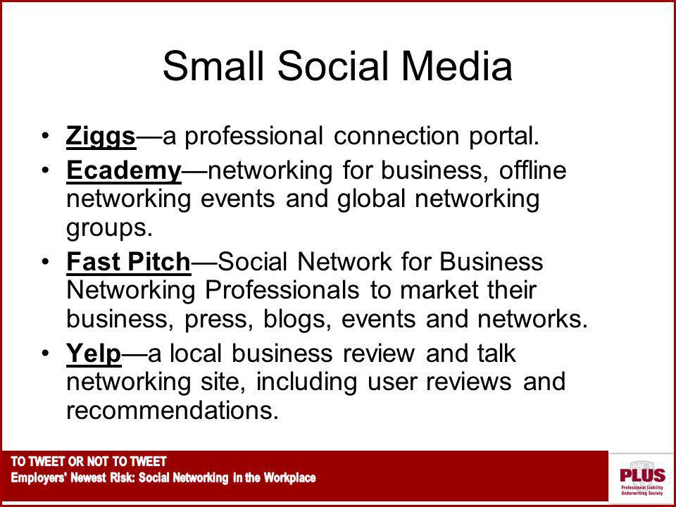 Small Social Media Ziggsa professional connection portal.