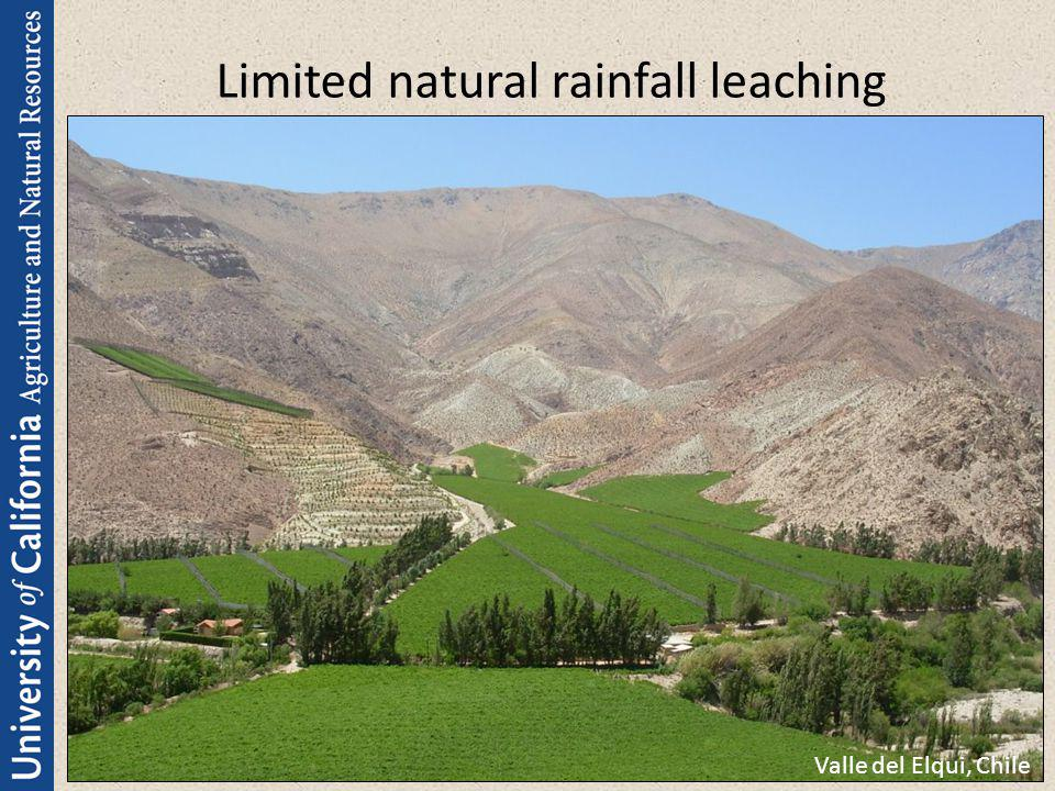 Limited natural rainfall leaching Valle del Elqui, Chile