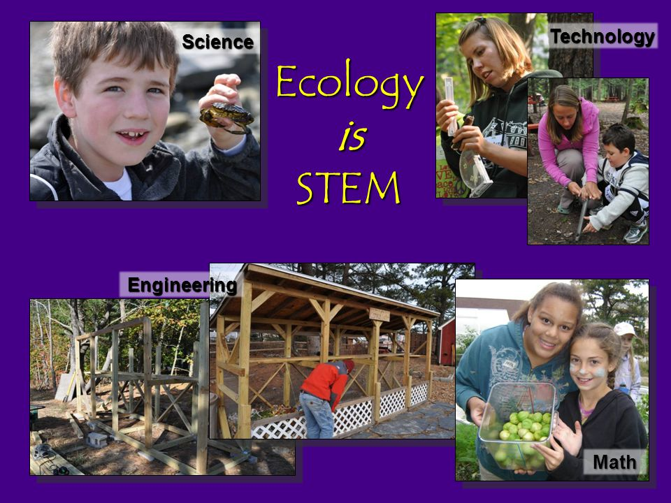 Ecology is STEM Science Technology Engineering Math