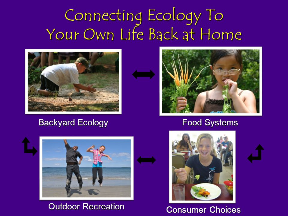 Connecting Ecology To Your Own Life Back at Home Backyard Ecology Outdoor Recreation Food Systems Consumer Choices