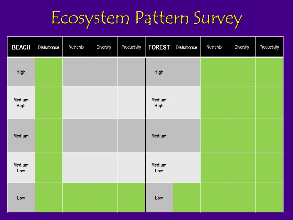 Ecosystem Pattern Survey BEAC H Nutrien ts Diversi ty Product ivity Disturb ance FORES T Nutrien ts Diversi ty Product ivity Disturb ance High Medium High Medium Medium Low Low BEACH Disturbance NutrientsDiversityProductivity FOREST Disturbance NutrientsDiversityProductivity High Medium High Medium Medium Low Low