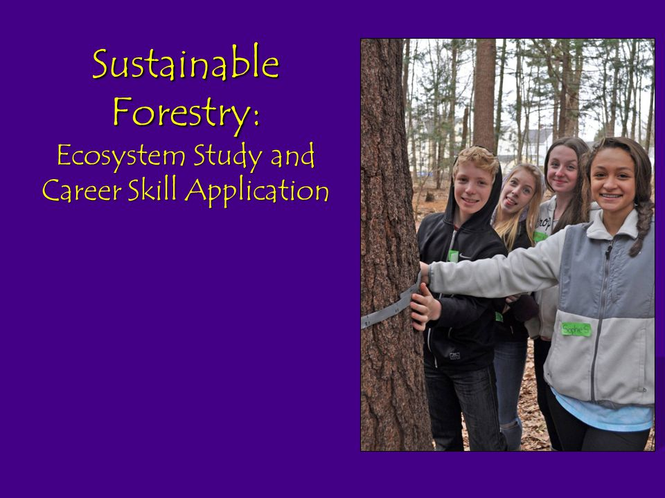 Sustainable Forestry: Ecosystem Study and Career Skill Application