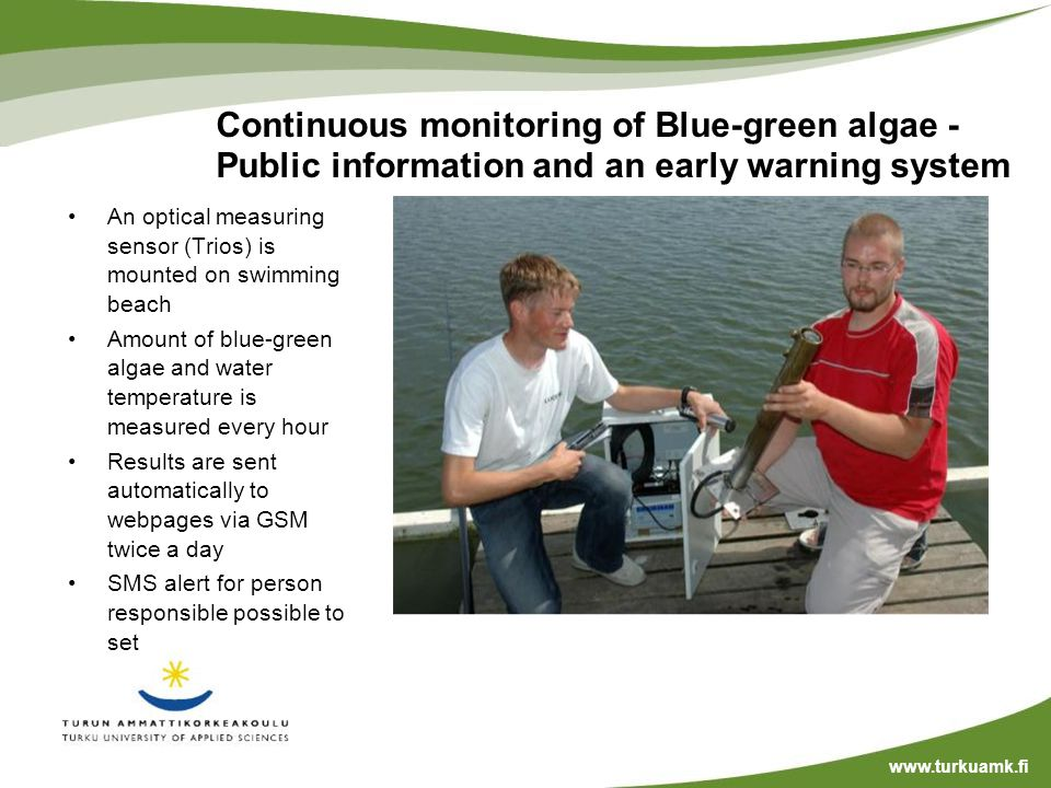 Continuous monitoring of Blue-green algae - Public information and an early warning system Tähän kuva tai kaavio An optical measuring sensor (Trios) is mounted on swimming beach Amount of blue-green algae and water temperature is measured every hour Results are sent automatically to webpages via GSM twice a day SMS alert for person responsible possible to set