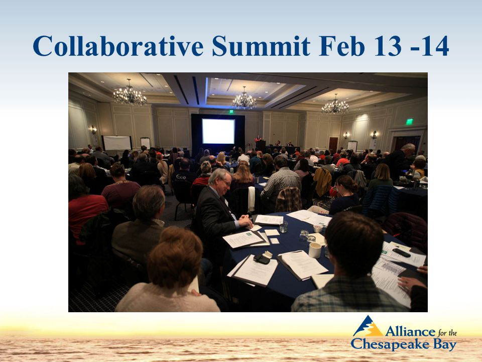 Collaborative Summit Feb 13 -14