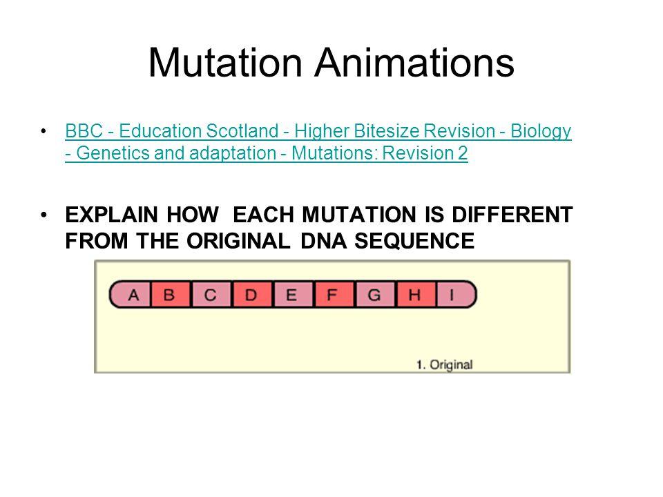 Mutation Animations BBC - Education Scotland - Higher Bitesize Revision - Biology - Genetics and adaptation - Mutations: Revision 2BBC - Education Sco